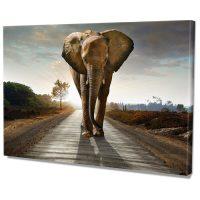 Falikép Elefánt Úton Afrika Vászonkép